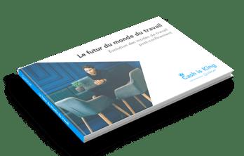 Horizontal_Book_Mockup_futur_travail_clearBG